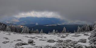 Paisagem do inverno cloudly de um dia de inverno Imagem de Stock