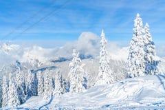 Paisagem do inverno com árvores cobertos de neve e cumes em Seefeld, Áustria imagens de stock