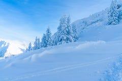 Paisagem do inverno com árvores cobertos de neve e cumes em Seefeld, Áustria imagens de stock royalty free