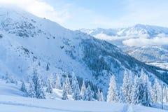 Paisagem do inverno com árvores cobertos de neve e cumes em Seefeld, Áustria fotografia de stock