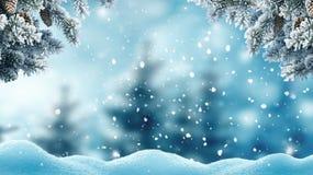 Paisagem do inverno com as árvores da neve e de Natal fotos de stock royalty free