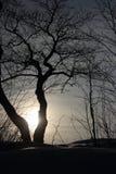 Praia do inverno da paisagem Imagem de Stock