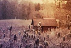 Paisagem do inverno com bathhouse Imagem de Stock