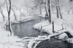 Paisagem do inverno com blizzard na floresta fotografia de stock royalty free