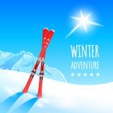 Paisagem do inverno com céus Imagem de Stock