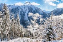 Paisagem do inverno com feixes e névoa do sol fotografia de stock