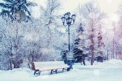 A paisagem do inverno com flocos de neve de queda bench coberto com a neve entre árvores gelados do inverno fotos de stock