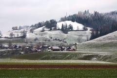 Paisagem do inverno com grama verde e casas de campo Fotografia de Stock Royalty Free