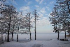 Paisagem do inverno com lago e floresta Fotografia de Stock Royalty Free