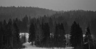 Paisagem do inverno com montanhas altas Imagens de Stock Royalty Free