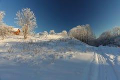 A paisagem do inverno com neve Imagem de Stock Royalty Free