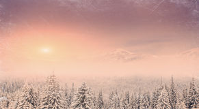 Paisagem do inverno com neve nas montanhas Carpathians, Ucrânia vi Imagem de Stock