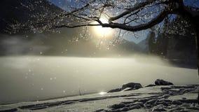 Paisagem do inverno com neve, queda de neve e névoa filme