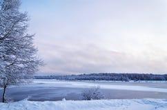 Paisagem do inverno com o lago e as árvores cobertos com imagem de stock