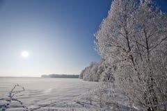 Paisagem do inverno com árvores geadas e rime Fotografia de Stock