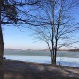 Paisagem do inverno com um lago fotos de stock