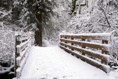 Paisagem do inverno com uma ponte de madeira pequena no meio do sno Fotografia de Stock