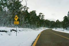 Paisagem do inverno da estrada do campo coberta com a neve fotos de stock royalty free