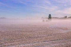 Paisagem do inverno da manhã Árvores da neve e névoa gelado no campo Imagens de Stock Royalty Free