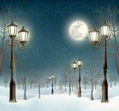 Paisagem do inverno da noite do Natal com postes de luz ilustração do vetor