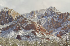 Paisagem do inverno de Sedona imagens de stock royalty free