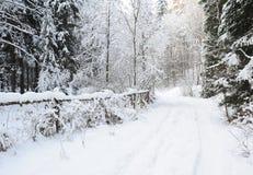 Paisagem do inverno de Suíça boêmio Imagens de Stock Royalty Free