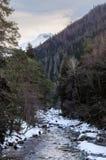 Paisagem do inverno de um rio da montanha com neve ao longo da costa o rio na floresta do pinho no Cáucaso Rússia Foto de Stock