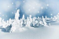 Paisagem do inverno do Natal com árvores nevado e flocos de neve Fotos de Stock