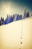 Paisagem do inverno do vintage Imagem de Stock