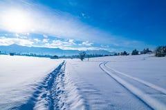A paisagem do inverno em Murnau é Staffelsee fotografia de stock royalty free