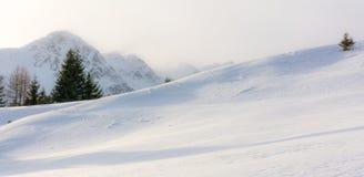 Paisagem do inverno em um vale da montanha com neve foto de stock royalty free
