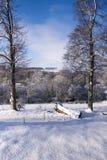Paisagem do inverno em Wiltshire Fotos de Stock