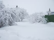 Paisagem do inverno Estrada rural coberta com a neve e as trações fotos de stock royalty free