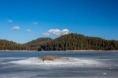 Paisagem do inverno Lago congelado, floresta Bulgária do pinho, montanhas de Rhodopes, lago Shiroka Polyana Ilha rochosa na parte fotografia de stock