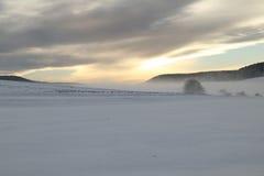 Paisagem do inverno mim Foto de Stock