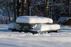Paisagem do inverno na costa oeste na Suécia fotografia de stock