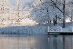 Paisagem do inverno na costa oeste na Suécia fotos de stock royalty free