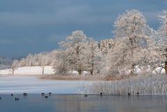 Paisagem do inverno na costa oeste na Suécia imagem de stock