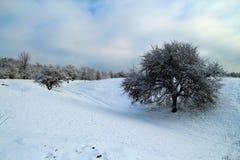 Paisagem do inverno na ilha de Khortitsa em Zaporizhzhia fotos de stock royalty free