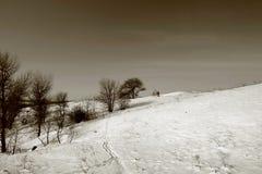 Paisagem do inverno na ilha de Khortitsa em Zaporizhzhia fotografia de stock