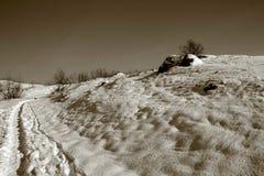Paisagem do inverno na ilha de Khortitsa em Zaporizhzhia imagem de stock royalty free