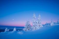 Paisagem do inverno na manhã Fotos de Stock