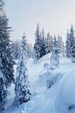 Paisagem do inverno nas montanhas Imagem de Stock