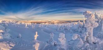 Paisagem do inverno nas montanhas no nascer do sol Imagens de Stock