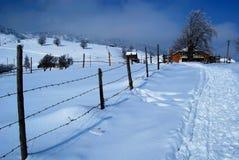 Paisagem do inverno no por do sol Fotos de Stock Royalty Free