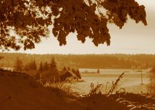 Paisagem do inverno no sepia Fotos de Stock Royalty Free