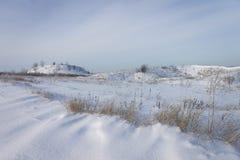 Paisagem do inverno O campo coberto com a neve Imagem de Stock Royalty Free