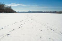 Paisagem do inverno - pegadas em um rio congelado Fotografia de Stock