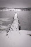 Paisagem do inverno pelo mar Fotografia de Stock Royalty Free