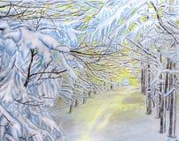 Paisagem do inverno Ramos cobertos de neve na luz solar Meio-dia de janeiro ilustração do vetor